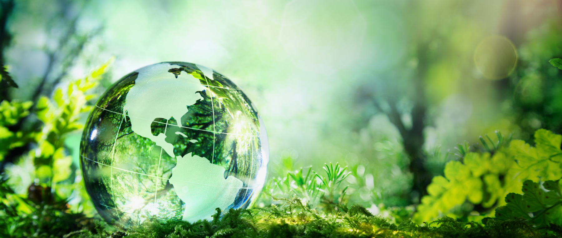 Sustainability takes centre stage