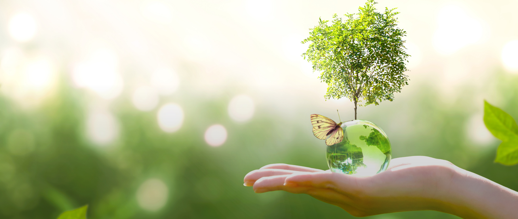 This World Earth Day, let's commit to a sustainable tomorrow.